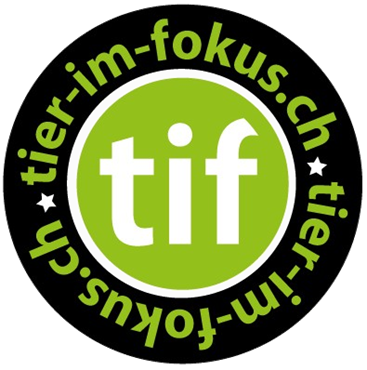 Picture for category Tier im Fokus