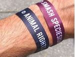 "Picture of Armbändeli schwarz und bordeaux ""Animal rights"" und ""Smash speciesism, tier-im-fokus.ch, 2Stk."